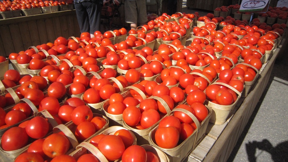 St. Jacobs Market Tomatoes