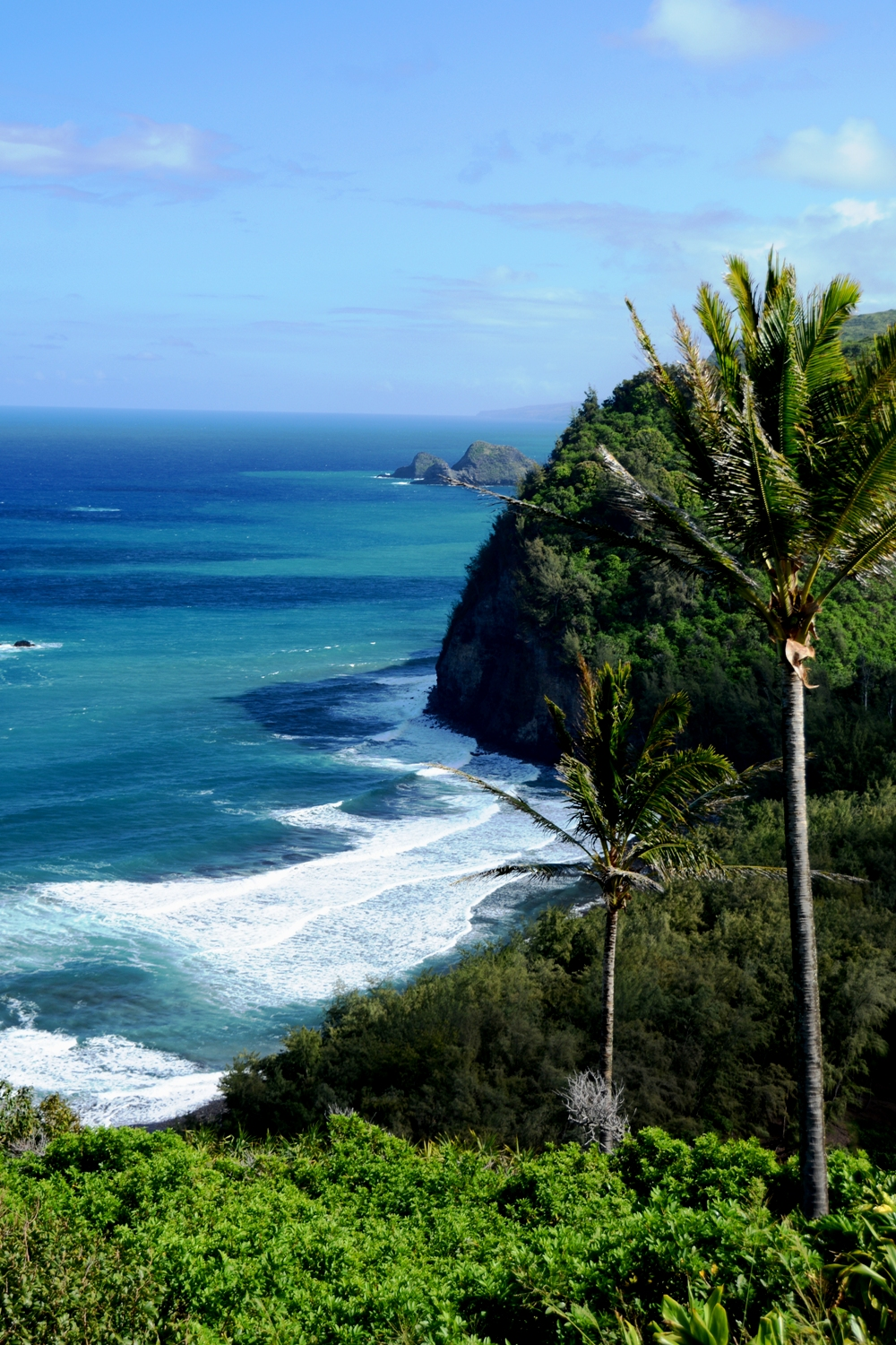 Pololu Valley View